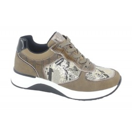 D'ANGELA DBD20166 Sneakers Taupe